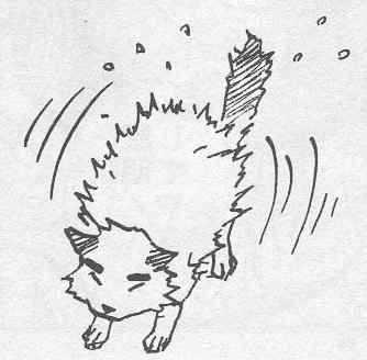 https://im.nineanime.com/comics/pic9/33/289/22234/Naruto210283.jpg Page 1