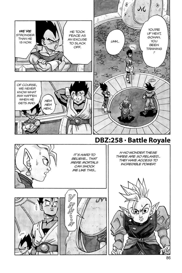 Dragon Ball 258
